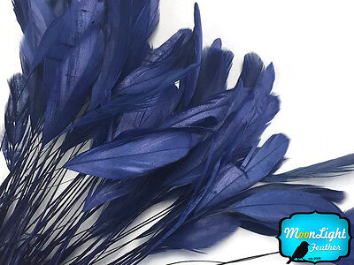 1 Dozen - NAVY BLUE Stripped Rooster Coque Tail Feathers Craft Party - Craft Suppliers
