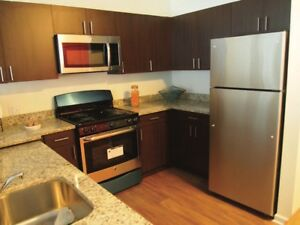 Looking for 1 bedroom apartment