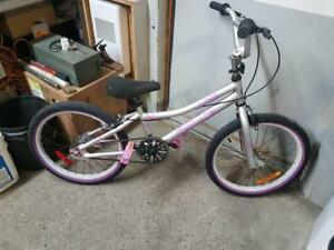 Vélo bmx supercycle gris 1 vitesse roues 20po coaster brake