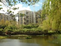 Fantastic one bedroom flat available now