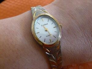 Cardinal Women's Two Tone Watch