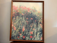 Vintage photograph on canvas Poppies by John Etches of Poole Professionally framed in 1995