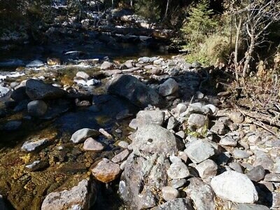 GOLD MINE Historic Sheridan MT Crazy Horse Lil Placer 20 Acre Gold Mining Claim