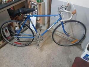 Vélo de course supercycle bleu 10 vitesses roues 27po cadre 21po