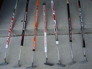 The Hockey Putter! Windsor Region Ontario image 1