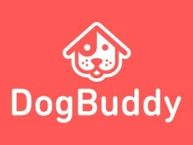 Reading's Best Dog Sitters and Dog Walkers offering Dog Day Care and Home Dog Boarding