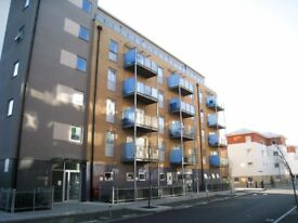 Modern and spacious one bedroom apartment 2 minutes away from Bow Road Underground!