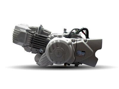 NEW ZONGSHEN 190CC ENGINE E-START 4ST MANUAL PIT DIRT BIKE POSTIE Z50 MOTO