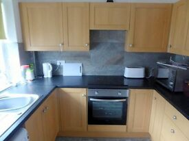 PROFESSIONAL HOUSE SHARE - DOUBLE ROOM TO LET