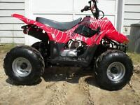 Brand New Kid's MiniSpider Quad/ATV 50-110cc TaoTao on SALE Now!
