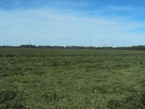 Land Available for Lease- 5 Minutes from West Edmonton