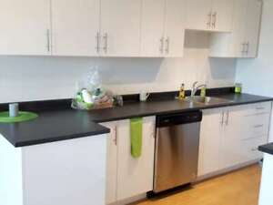 SYDNEY ARMS/COMPLETELY RENOVATED!!/ 2 BDRM/$1295 /APRIL !