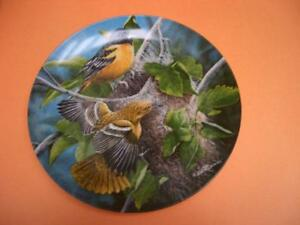 """BALTIMORE ORIOLE"" COLLECTOR PLATE BY KEVIN DANIEL KNOWLES 1985 London Ontario image 1"