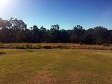 AGISTMENT AVAILABLE, HORSES OR CATTLE Rochedale Brisbane South East Preview