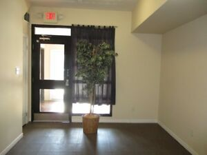 Downtown  Loft Apartment for Rent- Available  Now