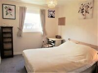 Bright spacious double room available for rent, 5 minutes walk from Aberdeen Royal Infirmary