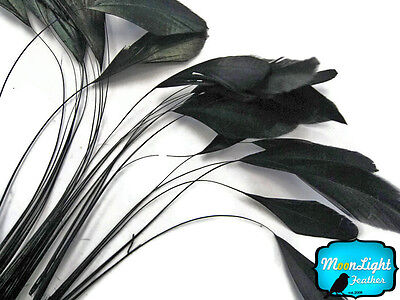 1 Dozen - BLACK Stripped Rooster Coque Tail Feathers Craft Party - Craft Suppliers