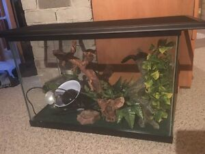 20 Gallon tank with all accessories