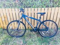 Ladies/Girls mountain bike for sale
