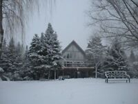 Cottage Rentals Sleeps 15 people, 90 Minutes from T.O.