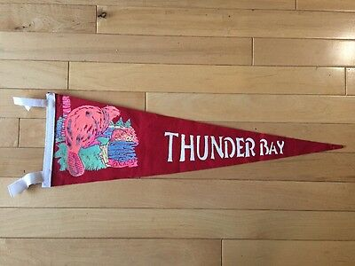 Vintage Thunder Bay Ontario Pennant Felt Banner Canada Souvenir On