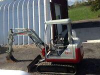 Mini Excavator Rental $150