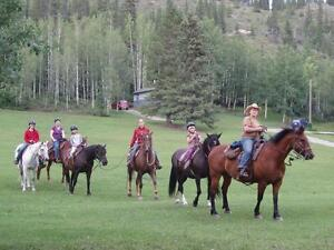 Guided Horseback Trail Rides Near Jasper National Park Edmonton Area image 5
