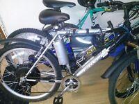 Electric bike 36v 800w Genuine Samsung battery pack 11Ah
