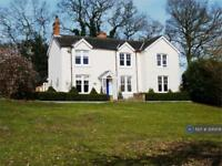 5 bedroom house in Sloe Hill, Halstead, CO9 (5 bed)