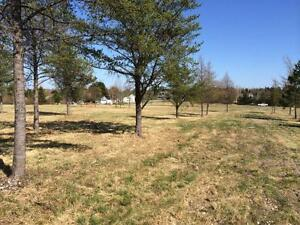 10 acres 600 m from City Limits Convenience