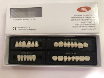 Huge Kaili Synthetic Polymer False Teeth 1 Full Set Of 28 Teeth Size T8-l8-34