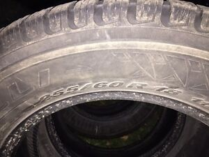 PIRELLI WINTER CARVING EDGE 255 60R18 West Island Greater Montréal image 3