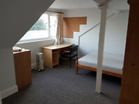 Two lovely rooms for rent at bargain price in big newly-refurbed house, Mutley Plain