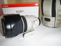 Canon EF 28-300mm 3.5-5.6 L USM Lens