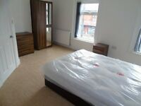 ROOM TO RENT IN BRAND NEW FULLY REFUBISHED HOUSE SHARE