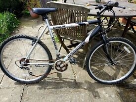 Men's bike - in need of some attention to chain and cables - FREE to collect.