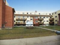 WaverTree Apartments -  Apartment for Rent