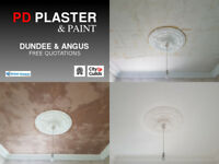PD Plaster & Paint - Forfar - Free Quotations
