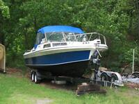 Sport Craft Fishing Boat/Workboat & Dual Axel Trailer -NEW PRICE