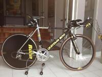 Quintana Roo Kilo 650c Tri bike