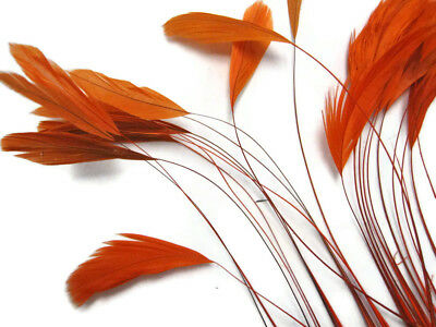 1 Dozen - Orange Stripped Coque Tail Feathers Wholesale Craft Supplier - Wholesale Craft Suppliers