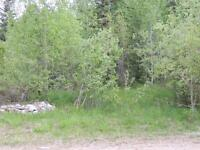 REDUCED -Folding Mtn - Lot 18A - between Hinton and Jasper