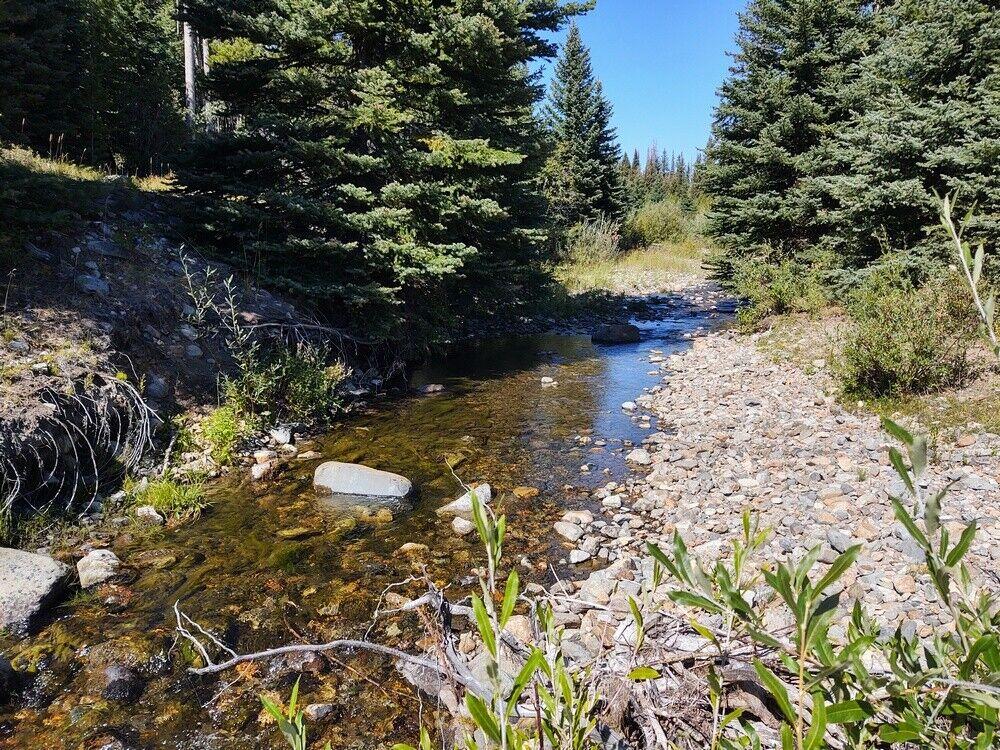 GOLD MINE Historic Basin MT Kid Sabre Placer Gold Mining Claim