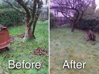 Amaryllis Garden Tidy Ups Experts!