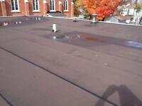 FLAT ROOFING Specialist