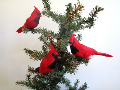 Cardinal Ornament (Perched Red Cardinal Holiday and Christmas Ornament 6 inch per SIX)