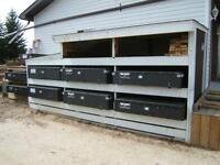BED PAC'R Rat Pack Tool Boxes