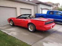 1992 Pontiac Trans Am Convertible