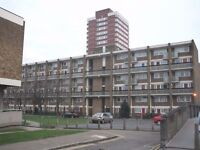 Great Location 2/3 Bedroom property in Mile End E3.