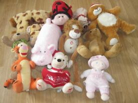 Soft Toys Collection (Large)
